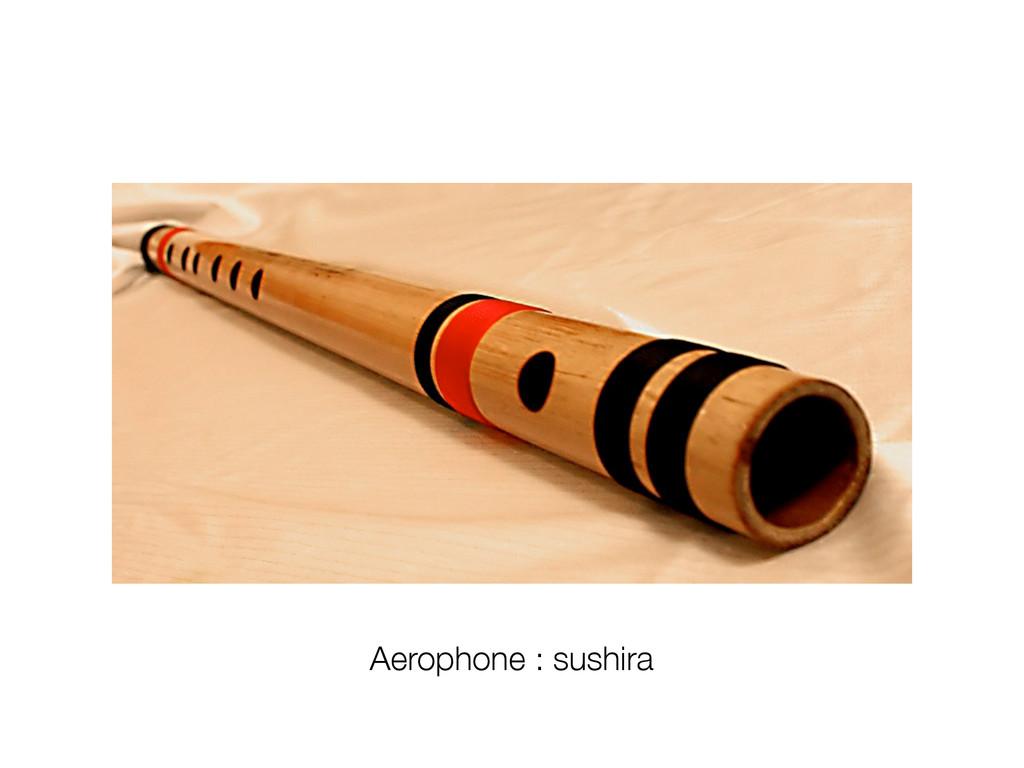 Aerophone : sushira