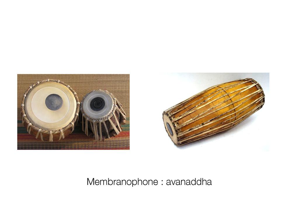 Membranophone : avanaddha