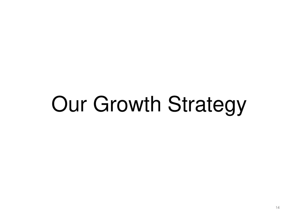 Our Growth Strategy 14