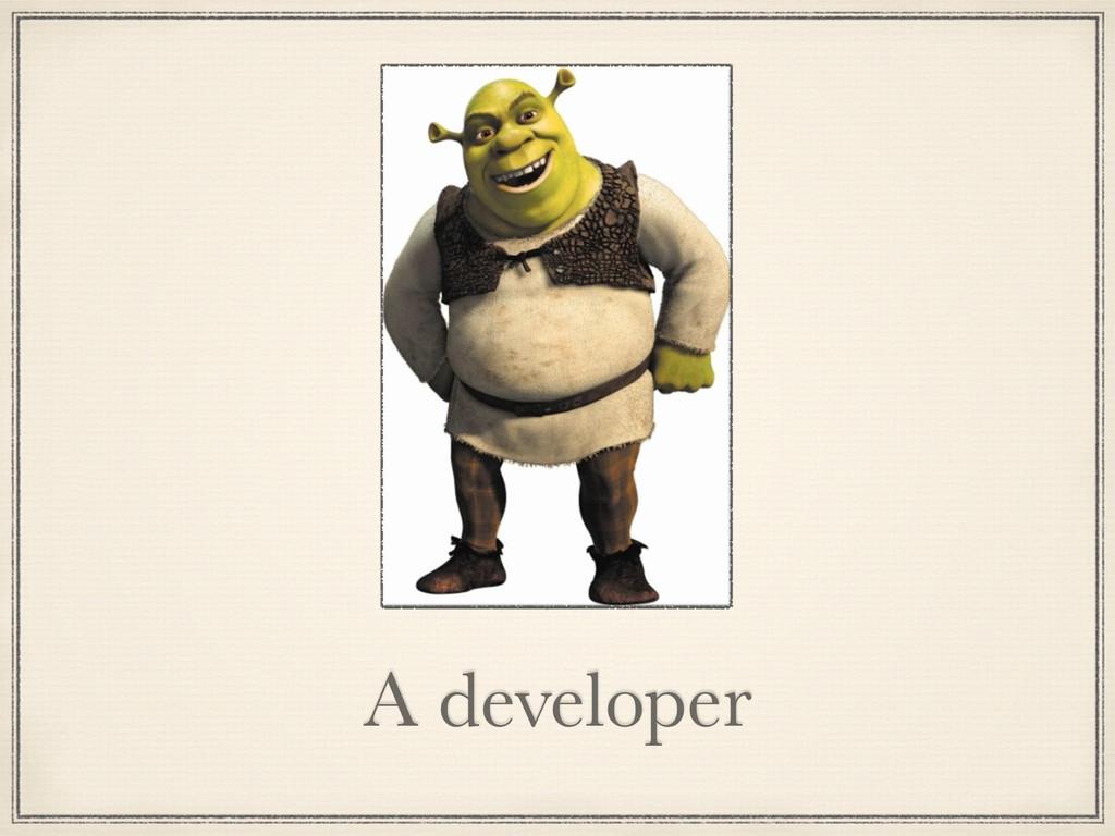 A developer