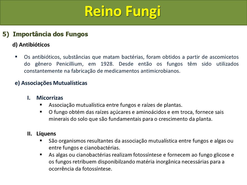 Reino Fungi 5) Importância dos Fungos d) Antibi...
