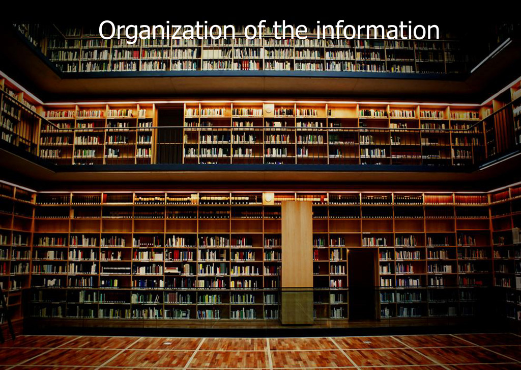 Organization of the information