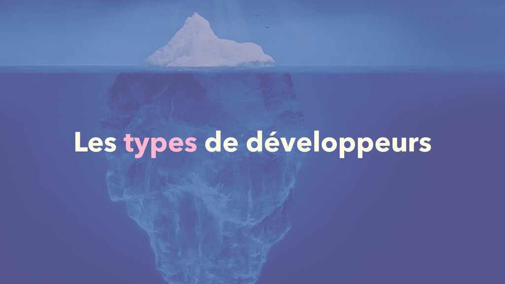 Les types de développeurs