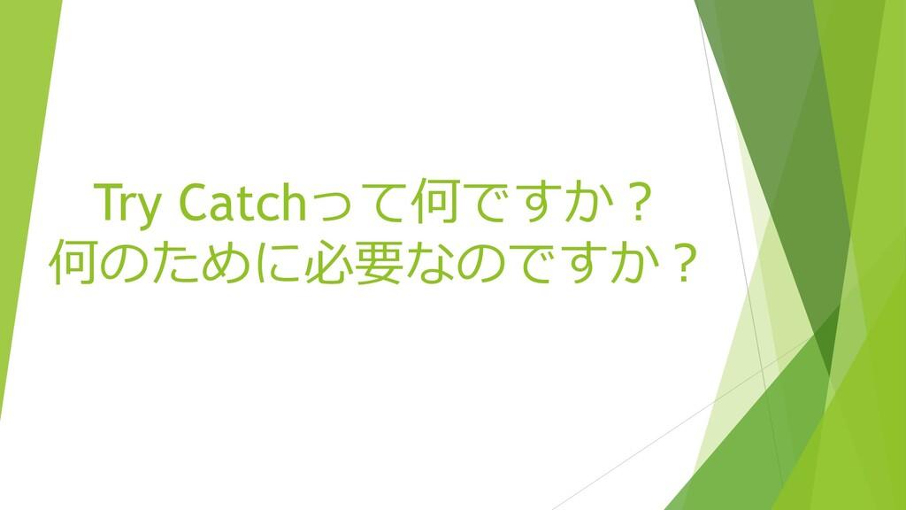 Try Catchって何ですか? 何のために必要なのですか?