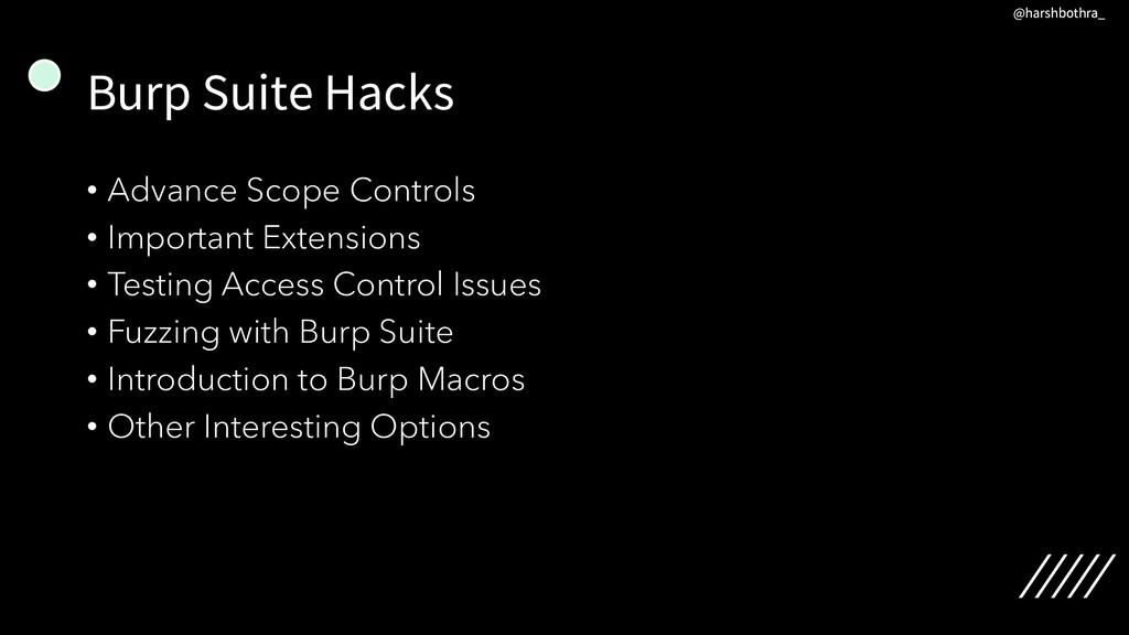 Burp Suite Hacks • Advance Scope Controls • Imp...