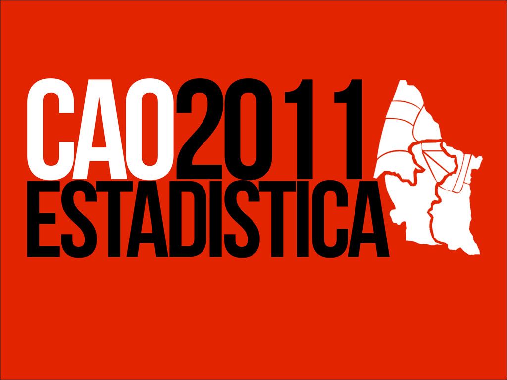 ESTADISTICA CAO2011