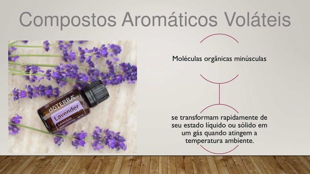 Compostos Aromáticos Voláteis Moléculas orgânic...