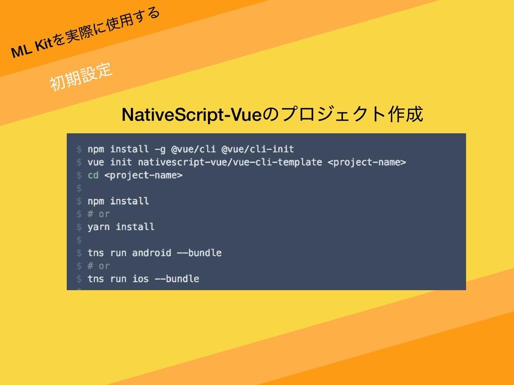 ML KitΛ࣮ࡍʹ༻͢Δ ॳظઃఆ NativeScript-VueͷϓϩδΣΫτ࡞