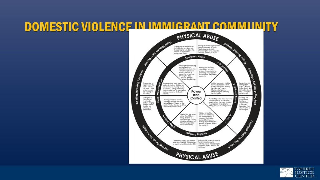 DOMESTIC VIOLENCE IN IMMIGRANT COMMUNITY