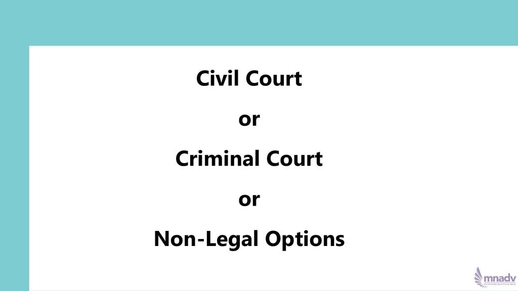 Civil Court or Criminal Court or Non-Legal Opti...