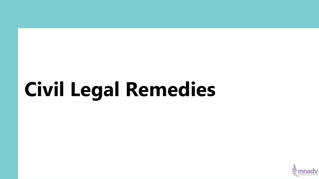 Civil Legal Remedies