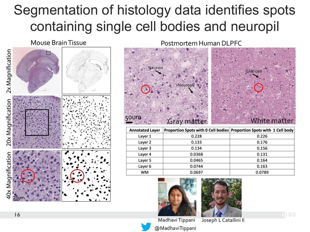 16 Segmentation of histology data identifies sp...