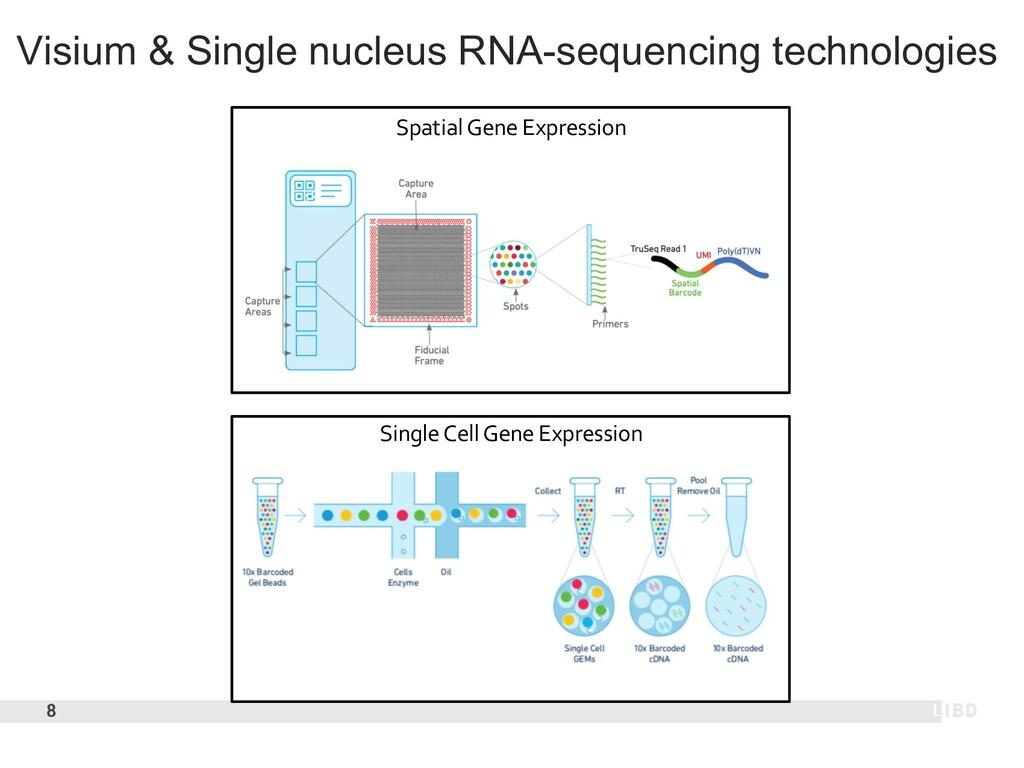 Visium & Single nucleus RNA-sequencing technolo...