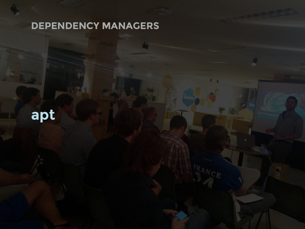 DEPENDENCY MANAGERS apt