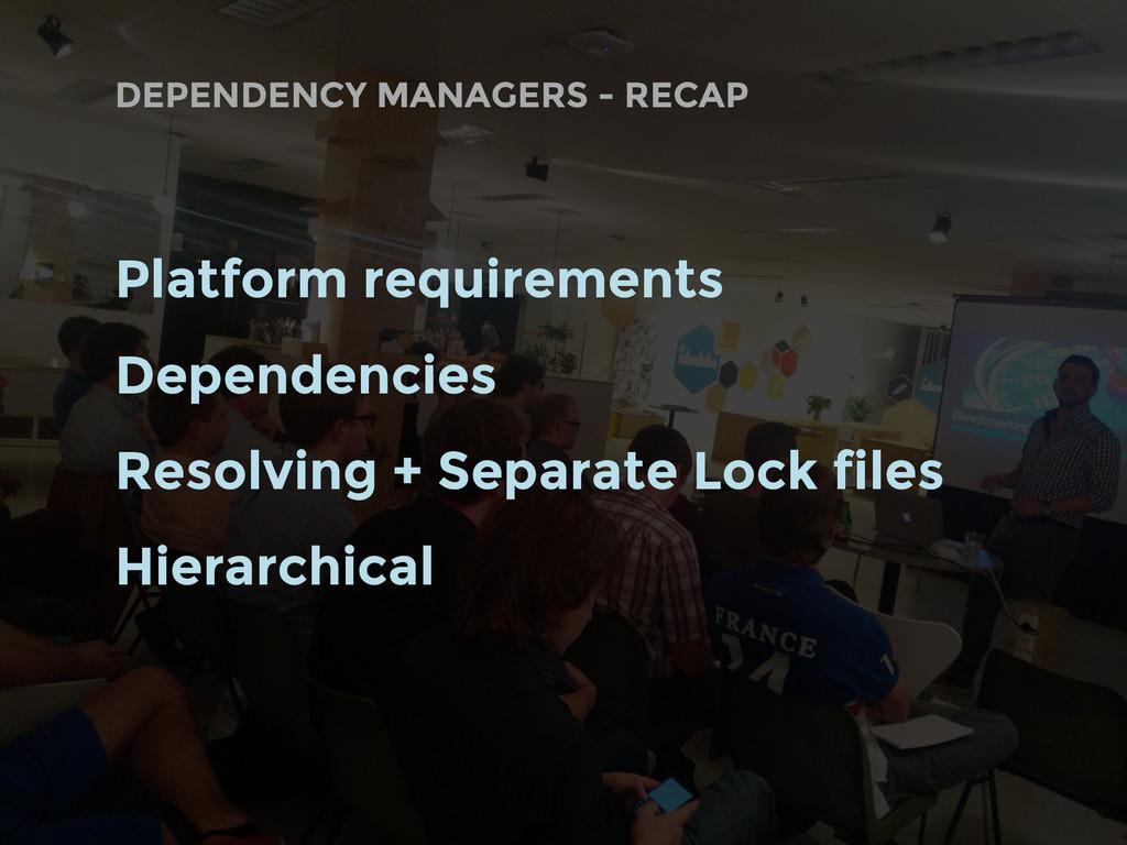 DEPENDENCY MANAGERS - RECAP Platform requiremen...