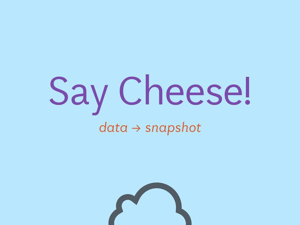 Say Cheese! data → snapshot