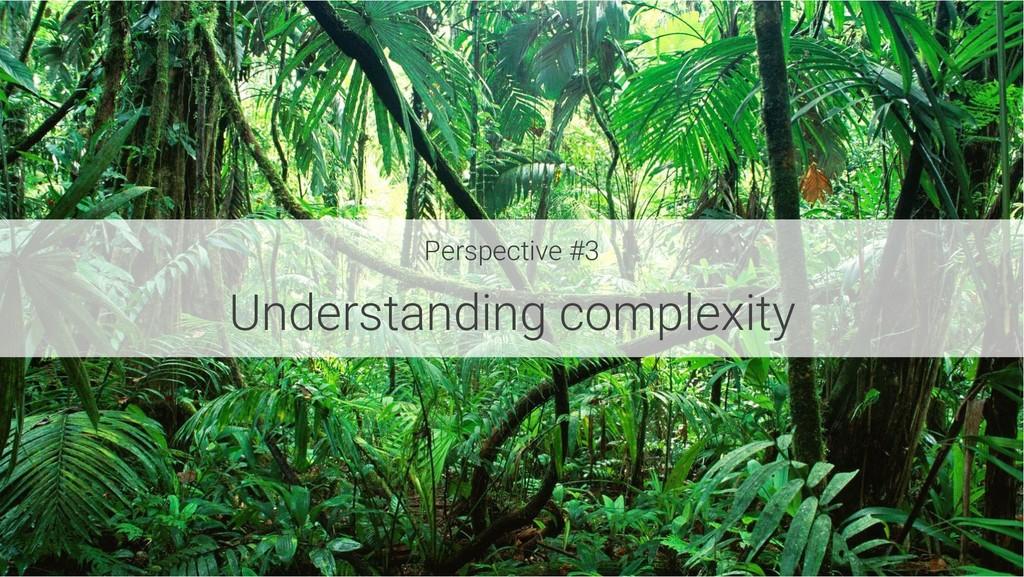 Perspective #3 Understanding complexity