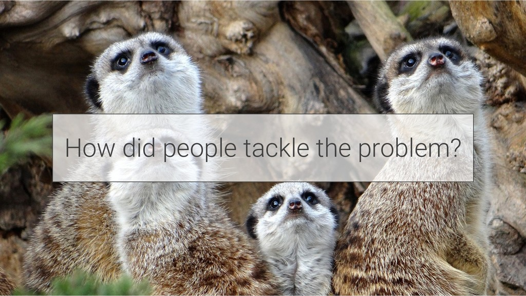 How did people tackle the problem?