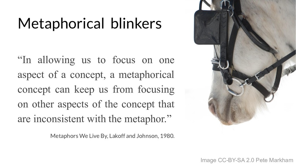 Metaphorical blinkers Image CC-BY-SA 2.0 Pete M...