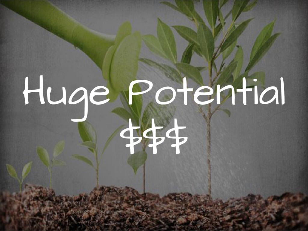 Huge Potential $$$