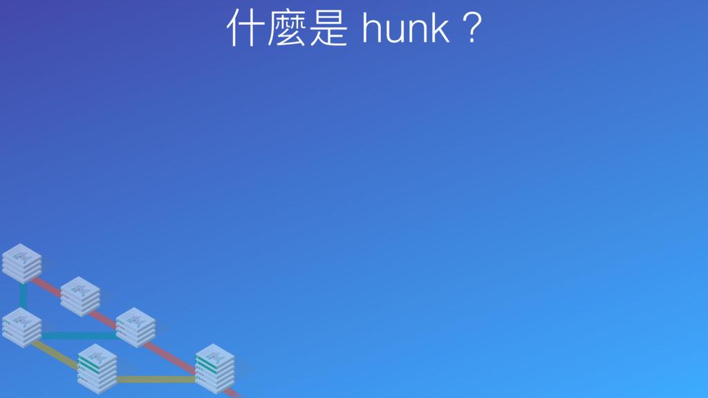 什什麼是 hunk ?