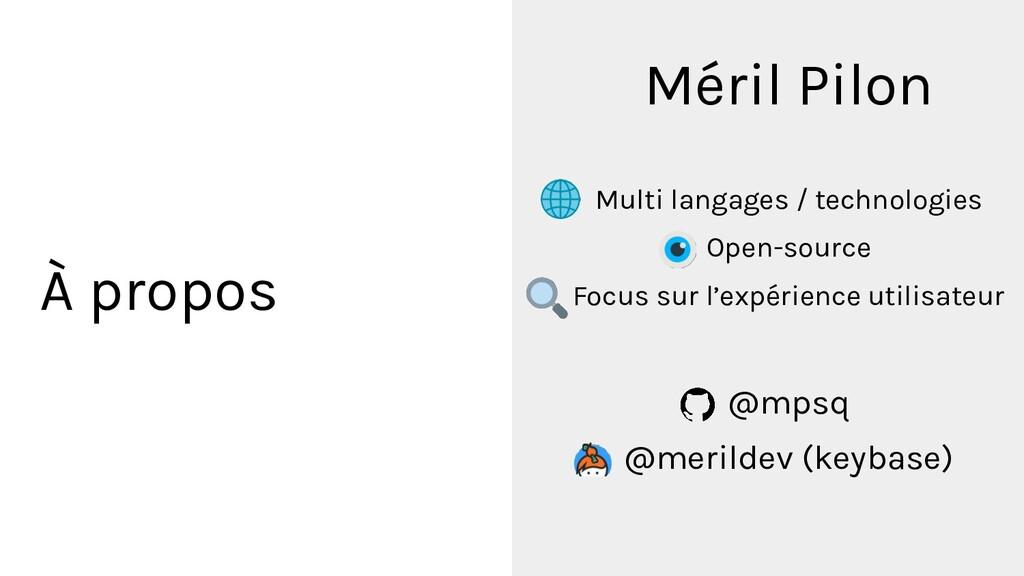 À propos Méril Pilon Multi langages / technolog...