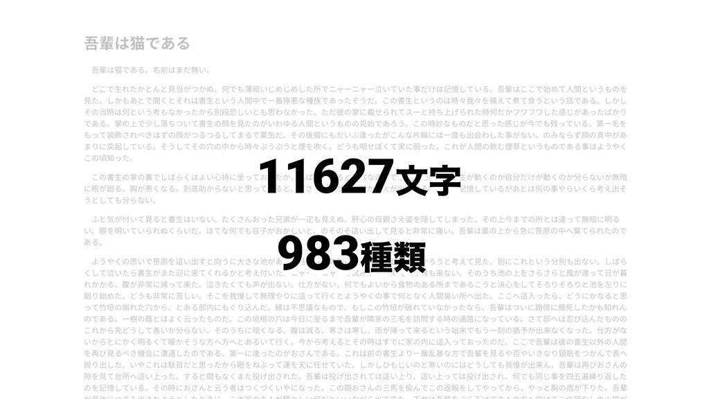 11627จ 983छྨ