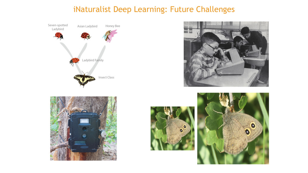 iNaturalist Deep Learning: Future Challenges
