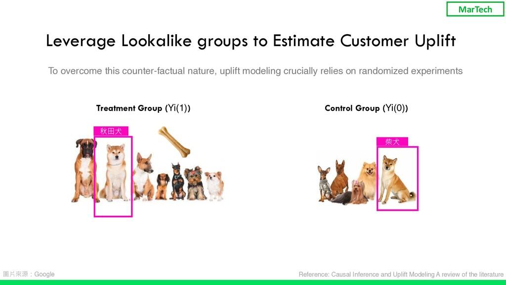 Leverage Lookalike groups to Estimate Customer ...
