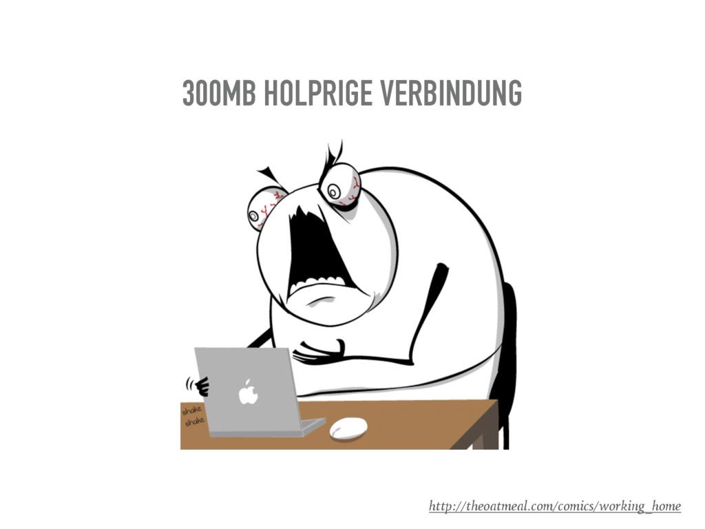 300MB HOLPRIGE VERBINDUNG http://theoatmeal.com...