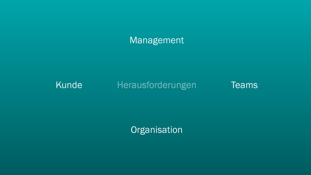 Herausforderungen Teams Management Kunde Organi...