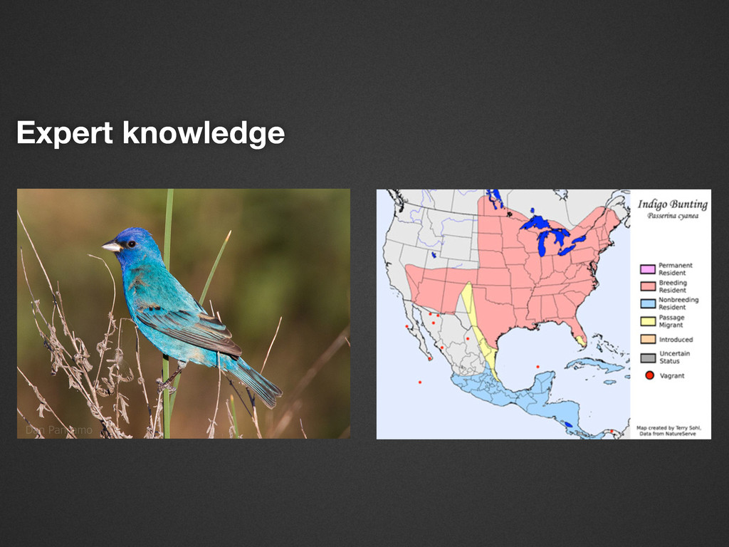 Expert knowledge