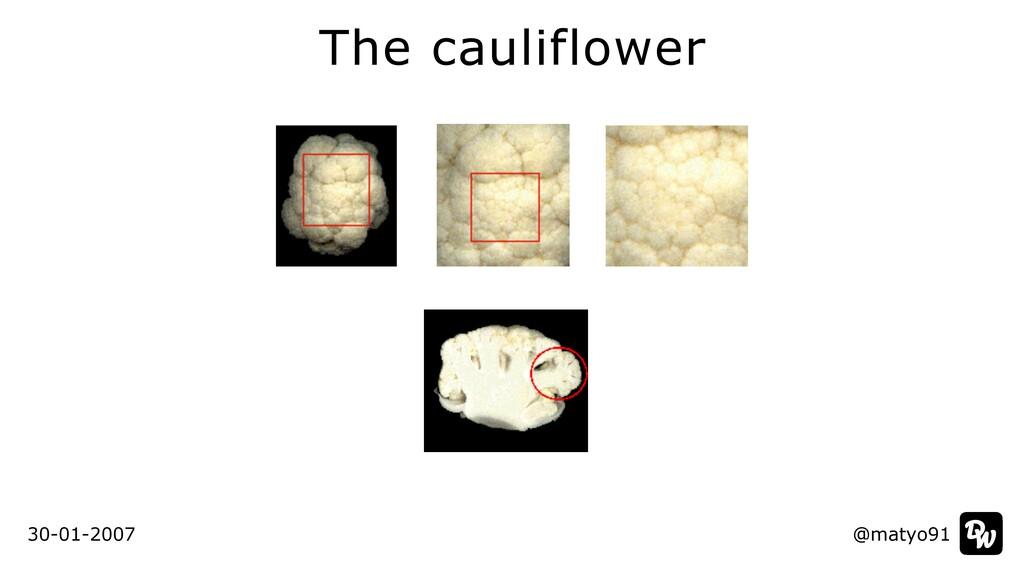The cauliflower @matyo91 30-01-2007