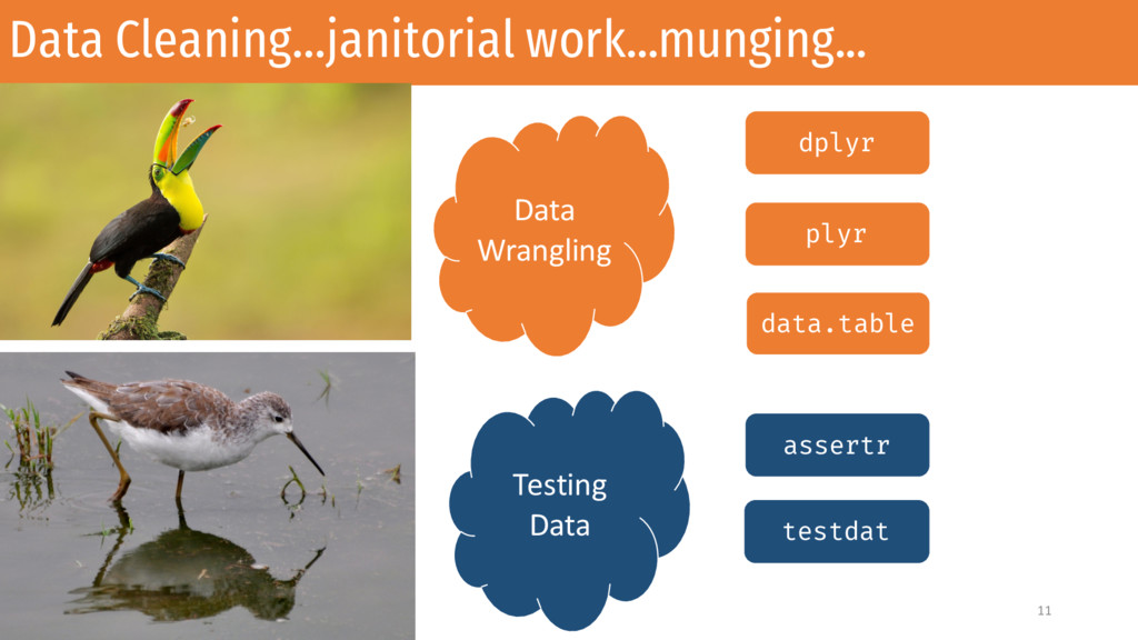 Data Cleaning…janitorial work...munging... 11 D...