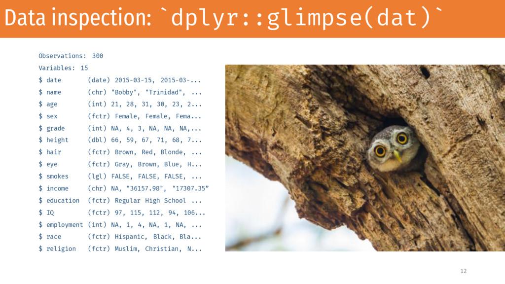 Data inspection: `dplyr::glimpse(dat)` Observat...