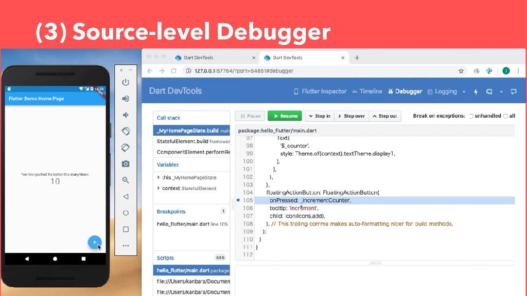 (3) Source-level Debugger