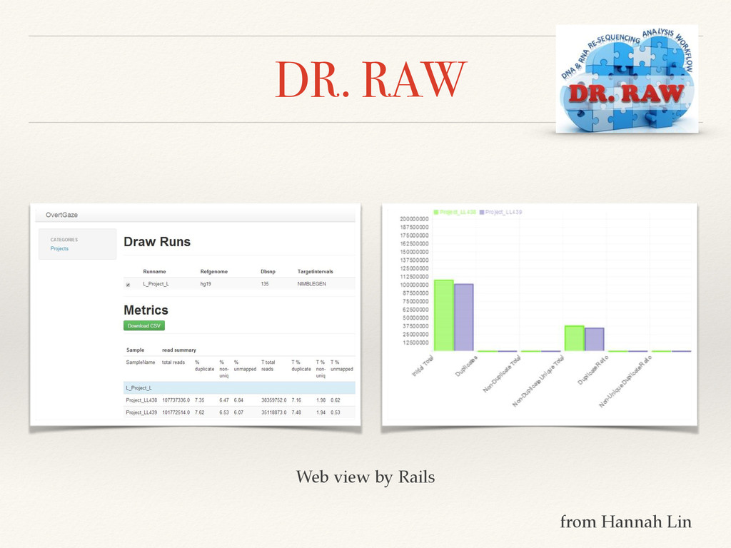 DR. RAW Web view by Rails from Hannah Lin