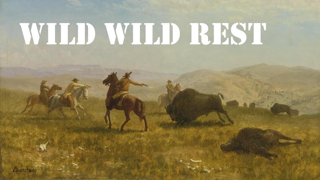 Provide Documentation Wild Wild REST