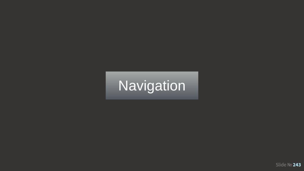 Slide № 243 Navigation