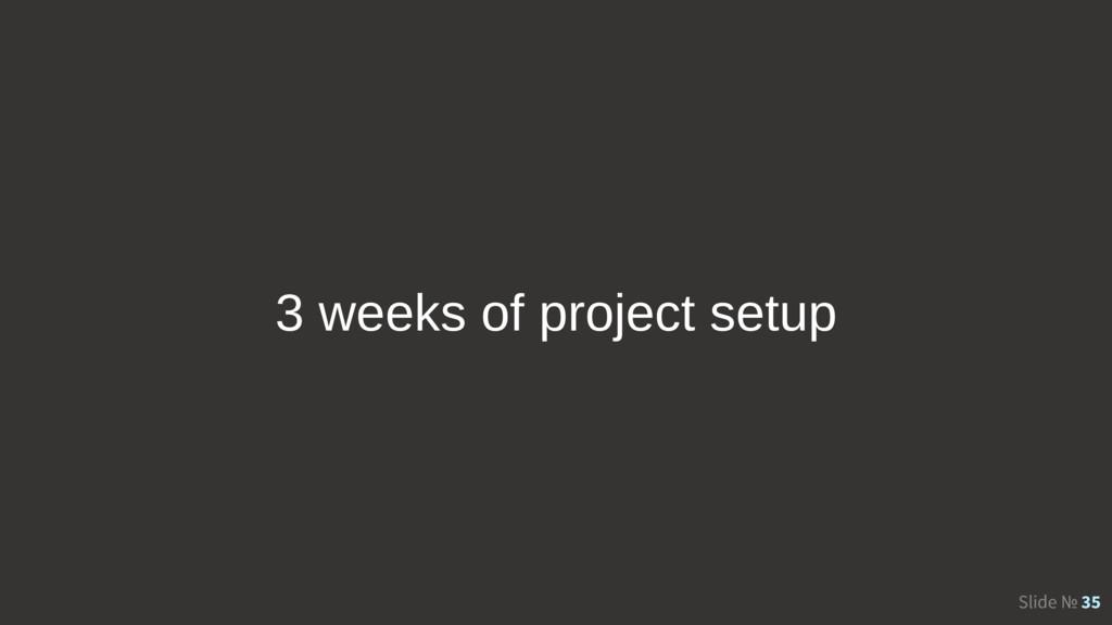 Slide № 35 3 weeks of project setup