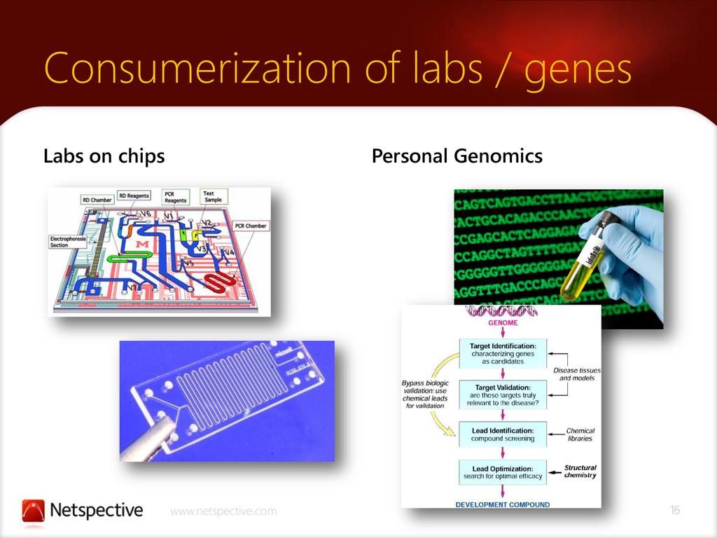 16 www.netspective.com Consumerization of labs ...