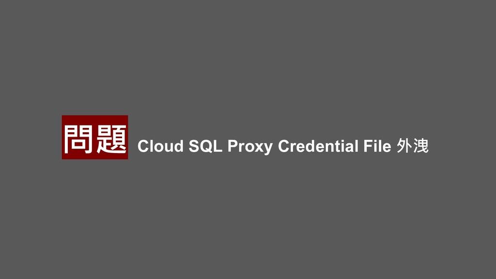 問題 Cloud SQL Proxy Credential File 外洩