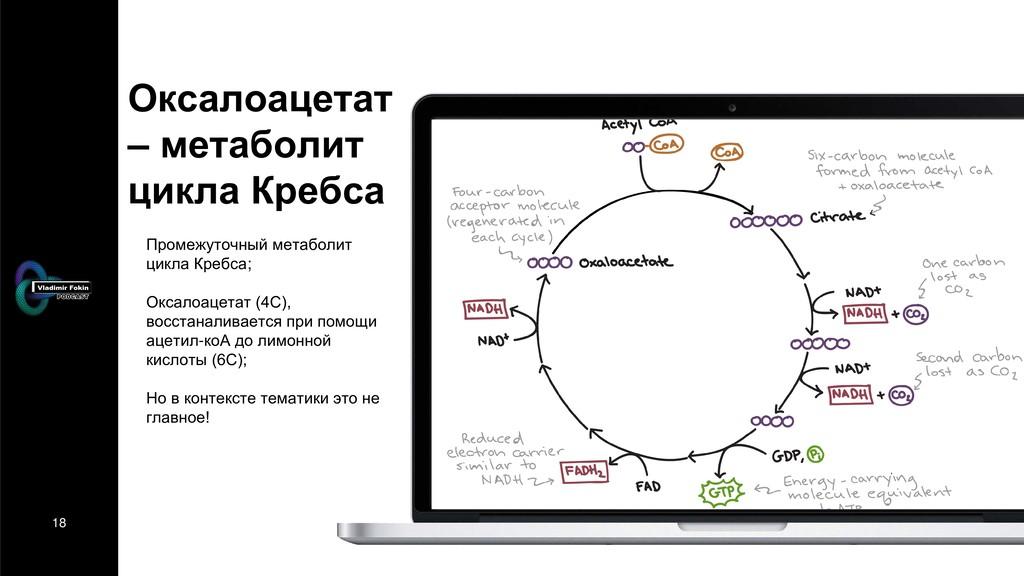 18 Оксалоацетат – метаболит цикла Кребса Промеж...