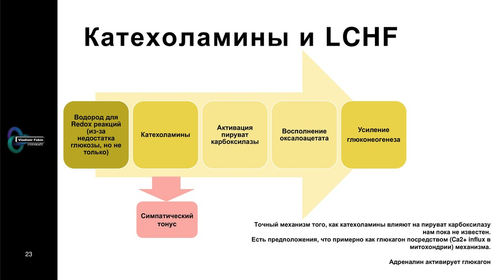 23 Катехоламины и LCHF Водород для Redox реакци...