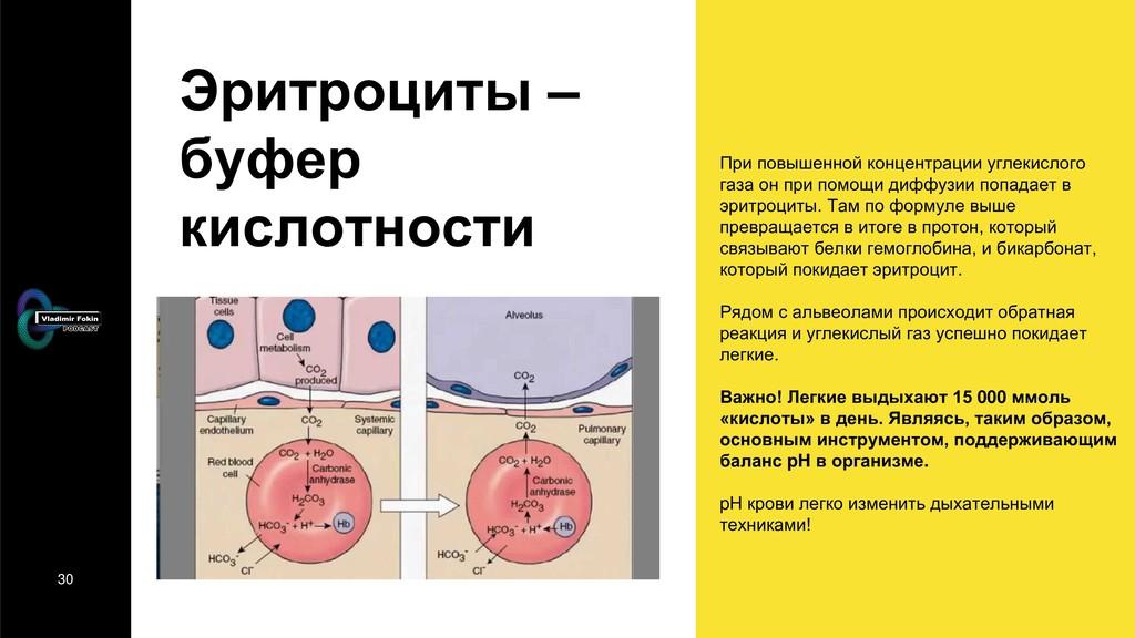 30 Эритроциты – буфер кислотности При повышенно...