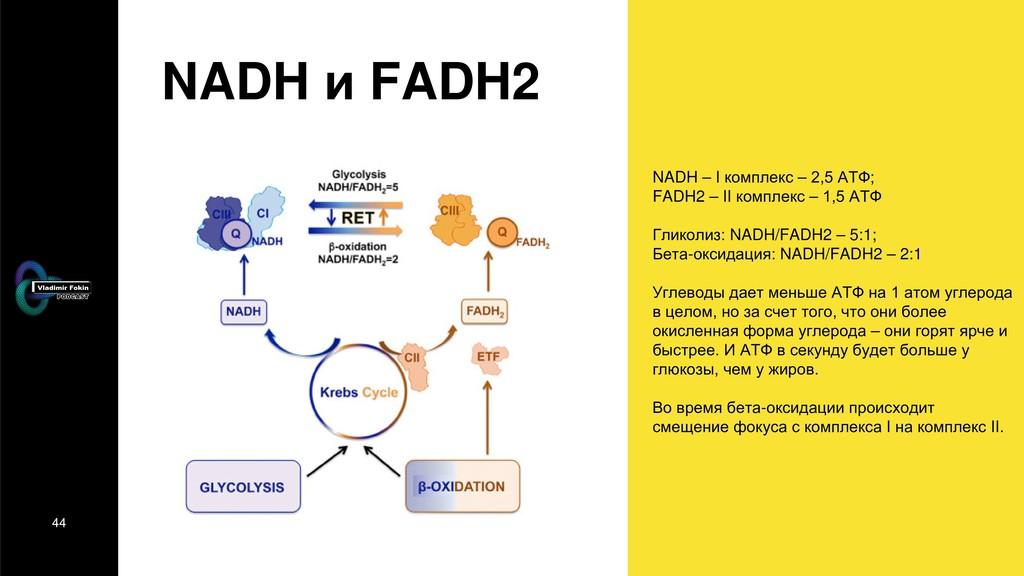 44 NADH и FADH2 NADH – I комплекс – 2,5 АТФ; FA...