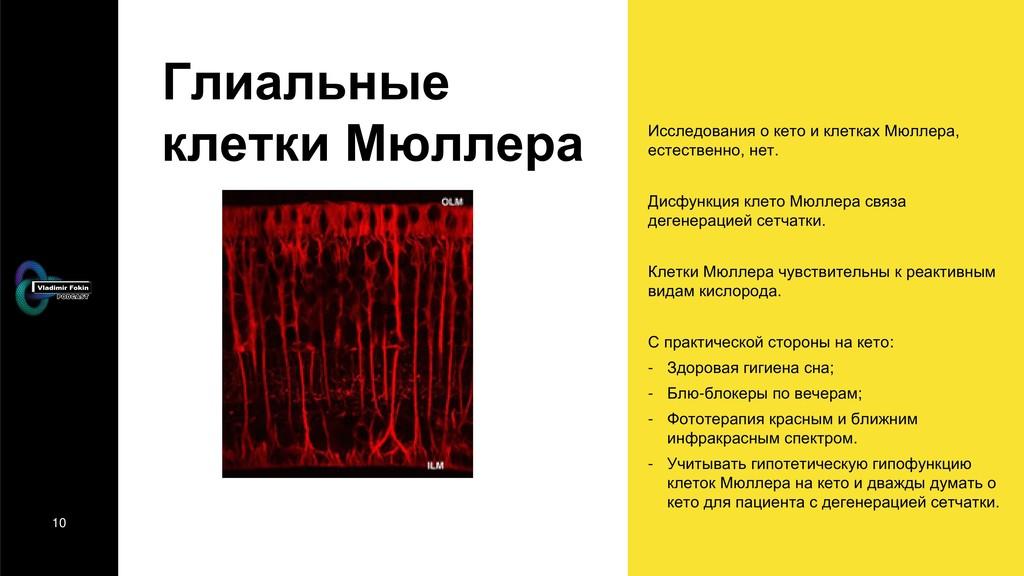 10 Глиальные клетки Мюллера Исследования о кето...