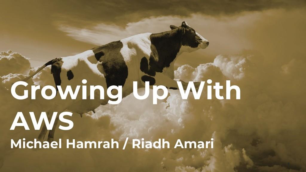 Growing Up With AWS Michael Hamrah / Riadh Amar...