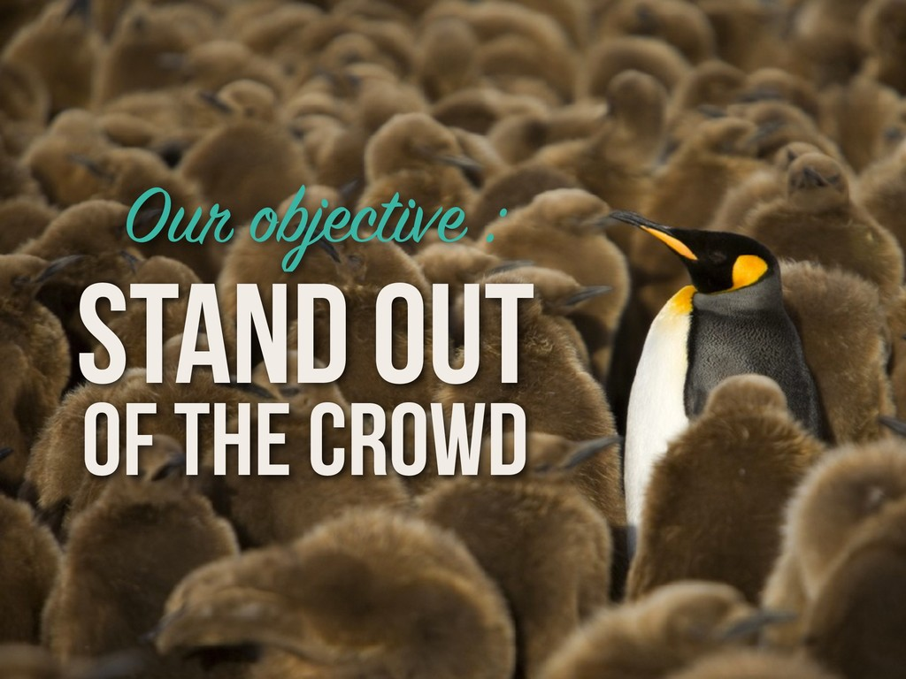 Our objective : STAND OUT OF THE CROWD