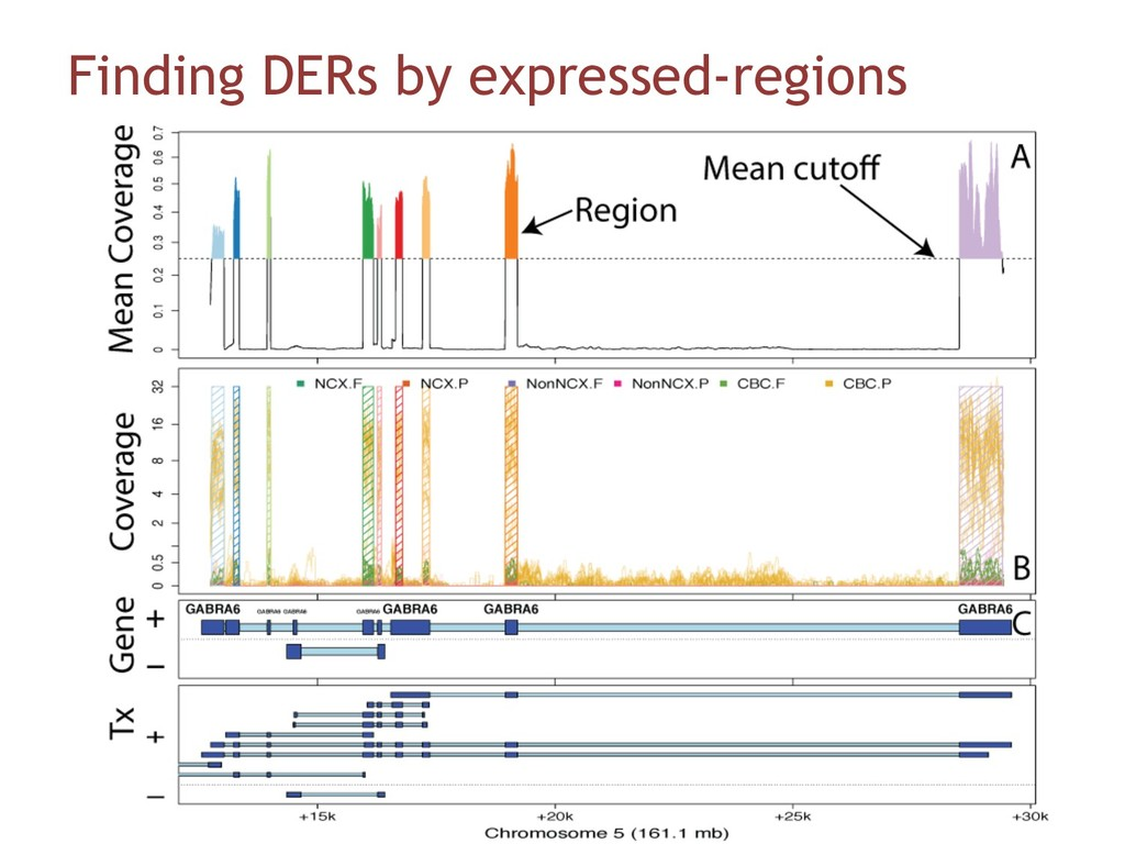 Finding DERs by expressed-regions